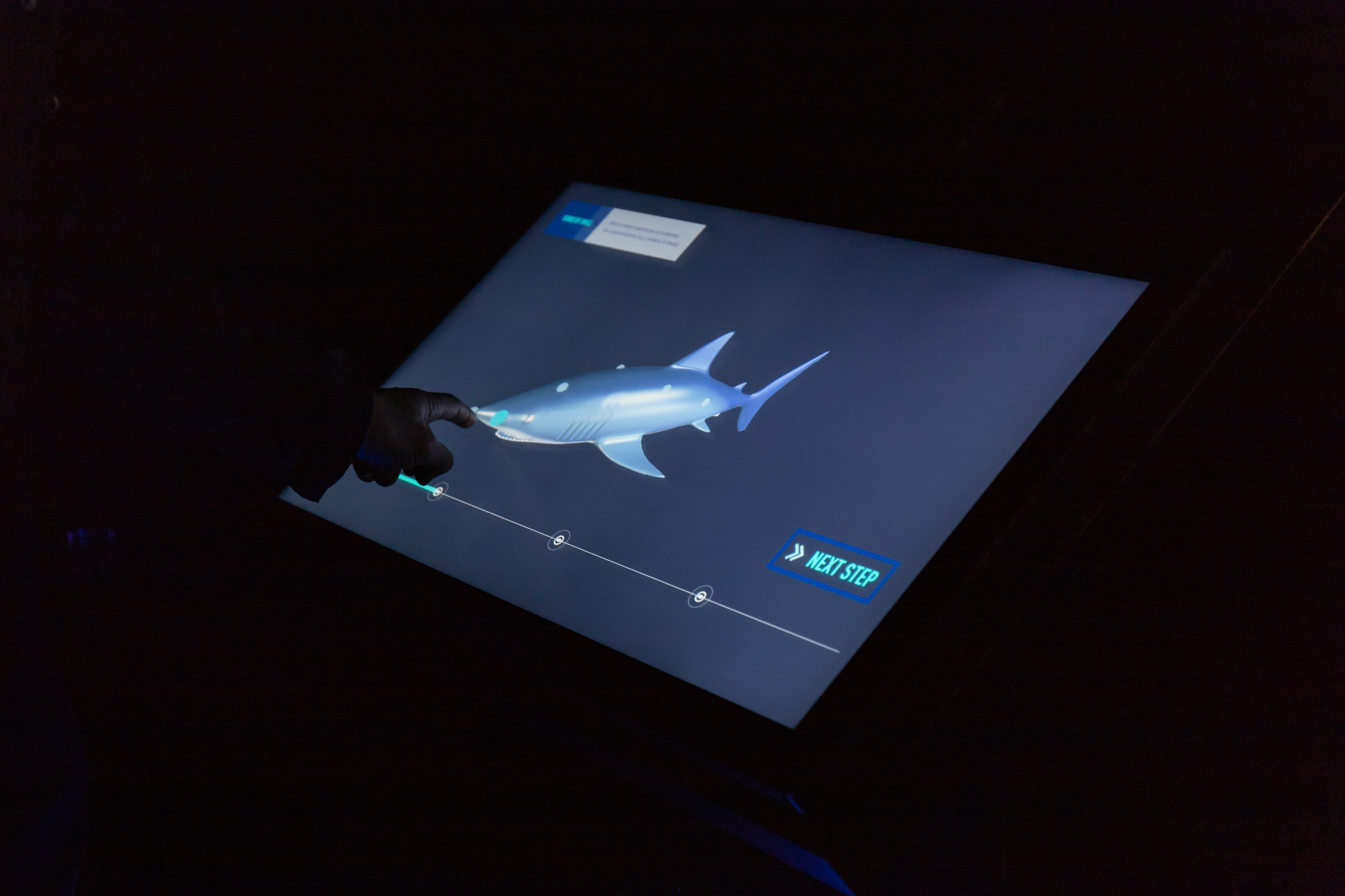 Borne interactive Requin