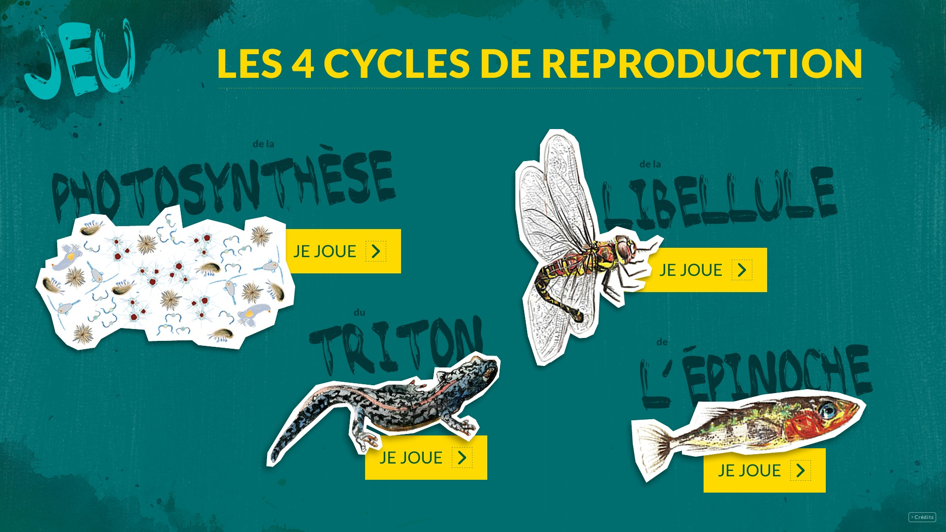 cycles page accueil